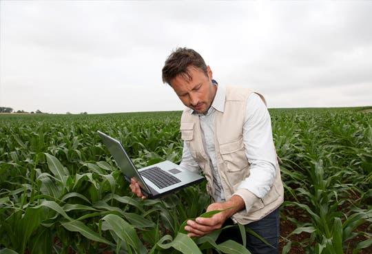 Profesionales agrónomos proponen ruta ministerial