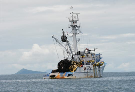 Delimitan zonas para pesca comercial