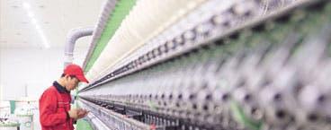 Producción nicaragüense y panameña crecerá más