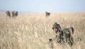 Aumenta uso de munición real de ejército israelí