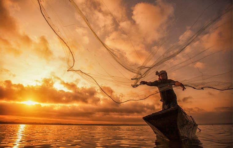 Especies marinas serán protegidas con pesca