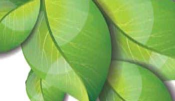 Bancos giran productos verdes