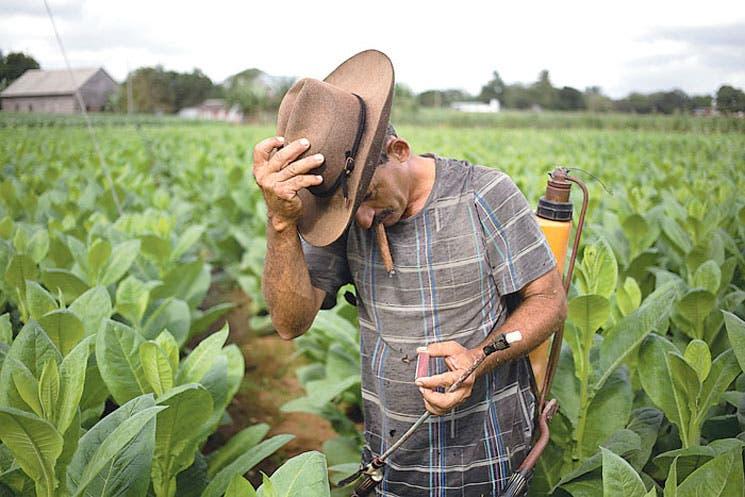 Gobierno cubano reconoce desaceleración de su economía