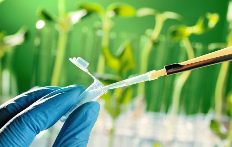 Laquinsa obtiene bandera azul ecológica