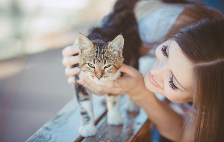 Cuide la salud de su mascota por virus del rabia