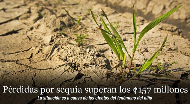 Pérdidas por sequía superan los ¢157 millones