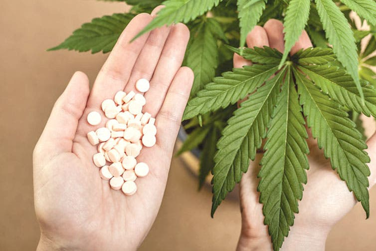 Legalizar la marihuana no aumentaría el consumo