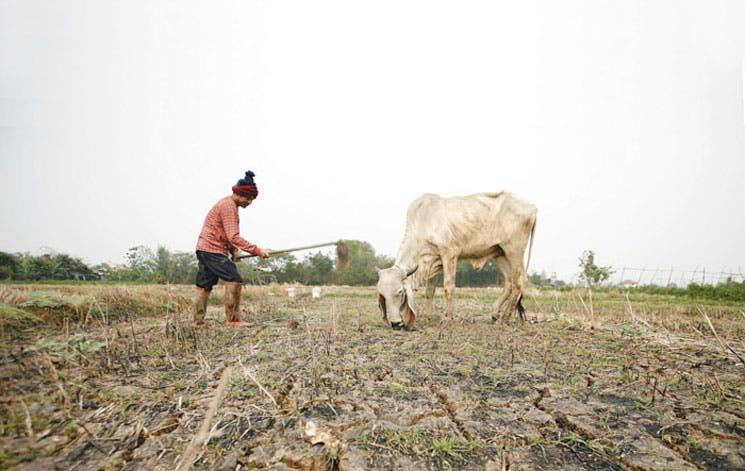 Guatemala entrega alimentos a los afectados por sequía