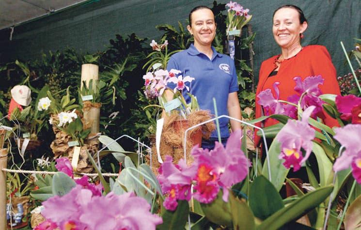 Un fin de semana para amantes de las orquídeas