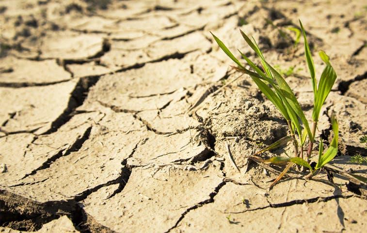 Estado de emergencia nacional por sequía en el país