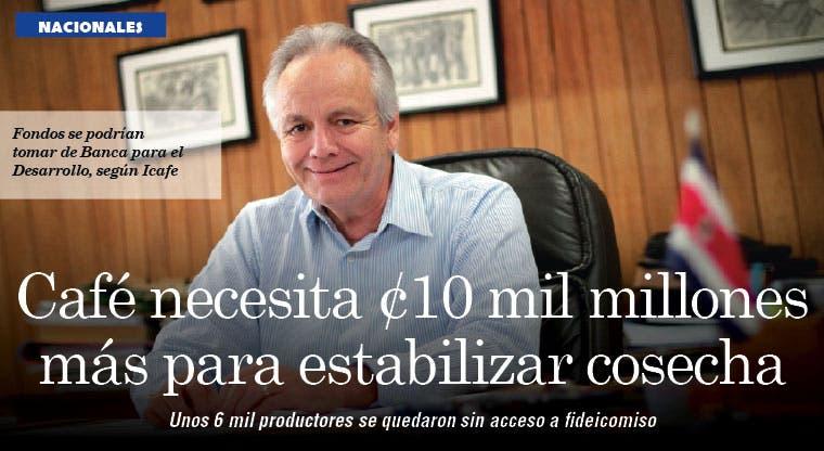 Café necesita ¢10 mil millones más para estabilizar cosecha