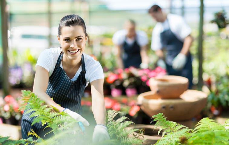 Pymes agrícolas se capacitan para mejorar su competitividad