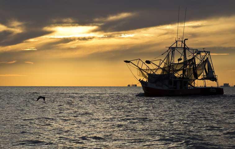 Ecuador y Costa Rica negociarán convenio pesquero