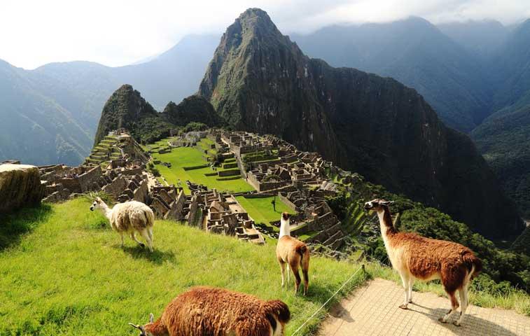 1.200 ticos compraron tiquetes de vuelo por $100 a Perú
