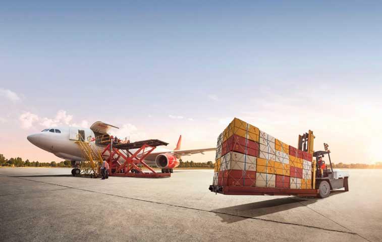 Avianca Cargo movió 10 mil toneladas de flores para San Valentín
