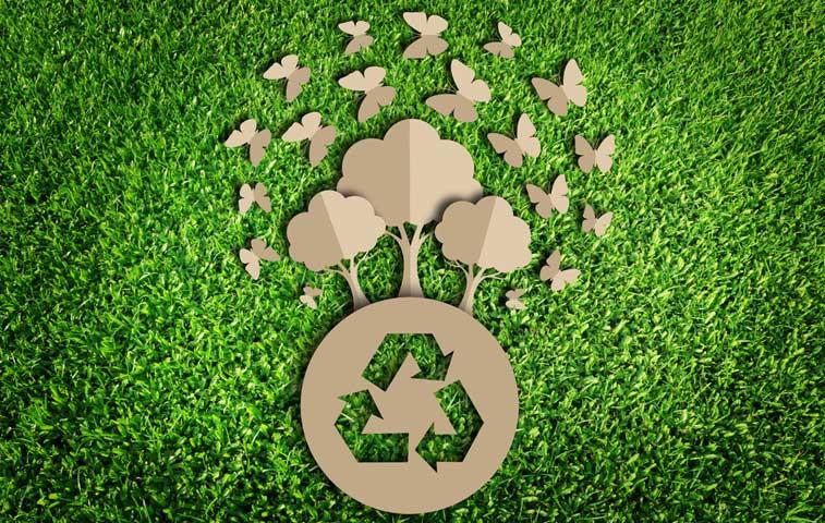 Empresas se suman a alianza para carbono neutralidad