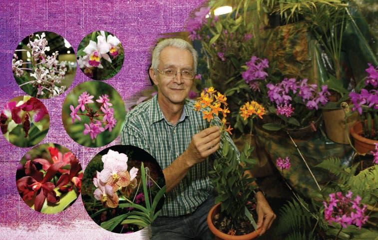 La fiesta de las Orquídeas