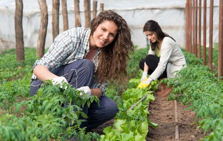 Mujeres jóvenes tendrán más apoyo para concretar su empresa