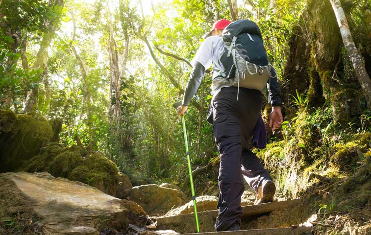 Costa Rica abre espacio universitario para dar títulos a guardaparques
