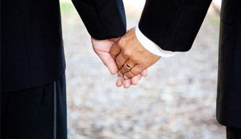 Solís pondrá a debate uniones gais