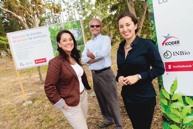 Unos 683 nuevos árboles embellecerán la Sabana
