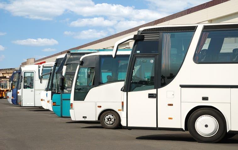 25 autobuseras ampliarán flota para atender Semana Santa