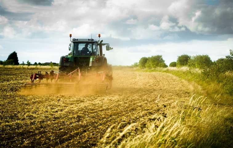 Costa Rica intercambia experiencias en foro de agricultura de OCDE