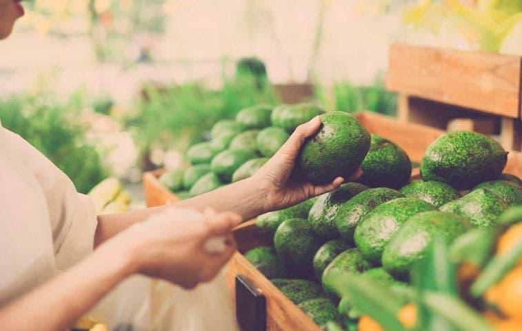Costa Rica regulará importaciones de aguacate
