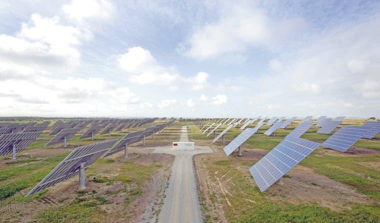 Granjas solares en Nueva Jersey y California desaparecen aves y árboles