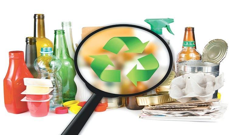 Empaques verdes atraen a mercados internacionales