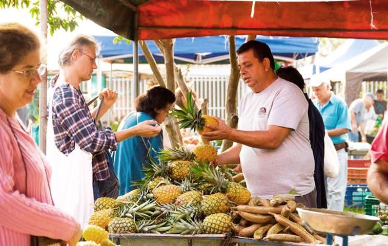 Cartago es sede de Festival de Agricultura Orgánica