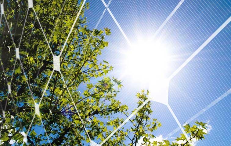 Consulta global sobre clima y energía incluirá a la voz tica