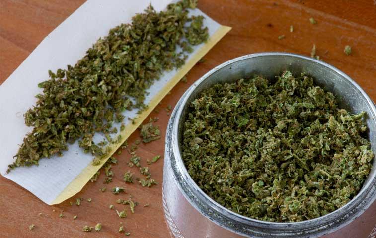 Gobierno rechaza fumado de marihuana