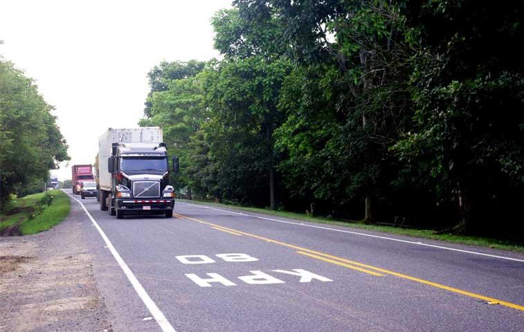 Ecologistas interponen acción contra proyecto para ruta 32