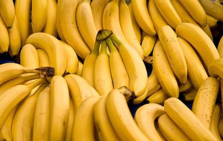 Temen ingreso de enfermedad contra el banano