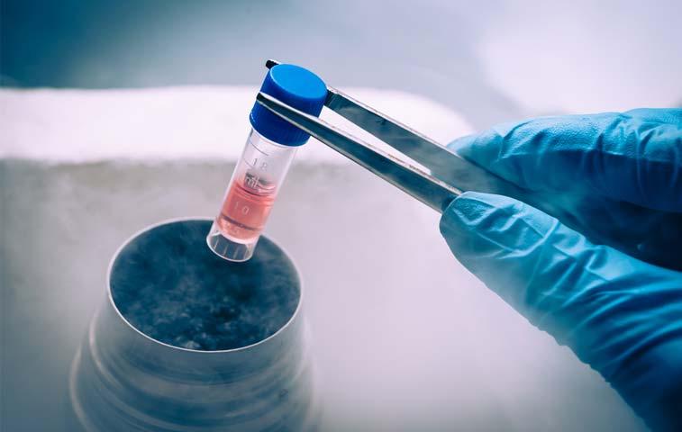 Decreto potenciaría negocio de investigaciones biomédicas