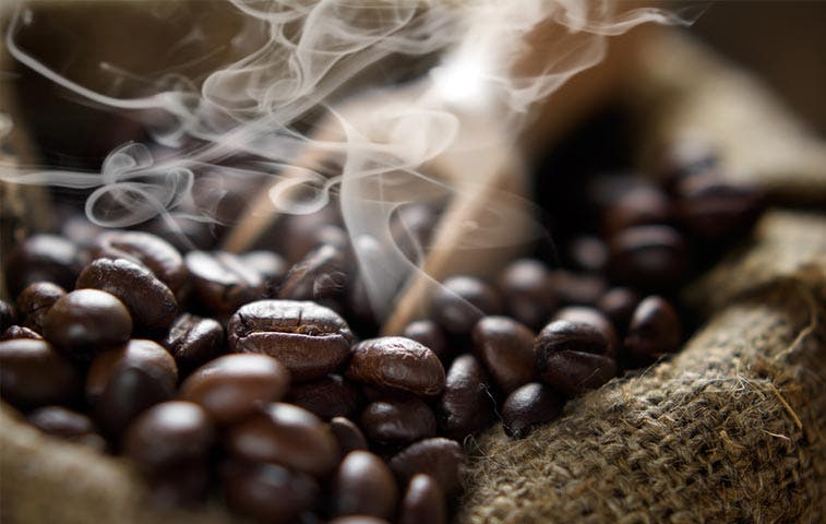 Cafetaleros josefinos serán beneficiados con planta agroindustrial