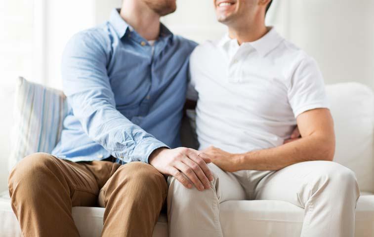 Gobierno convoca proyecto para legalizar uniones de hecho gais
