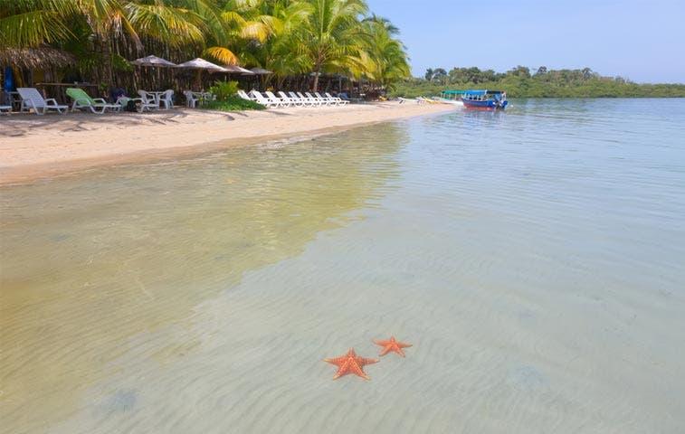 Tours a Bocas del Toro desde $299 con nuevo vuelo de Air Panama