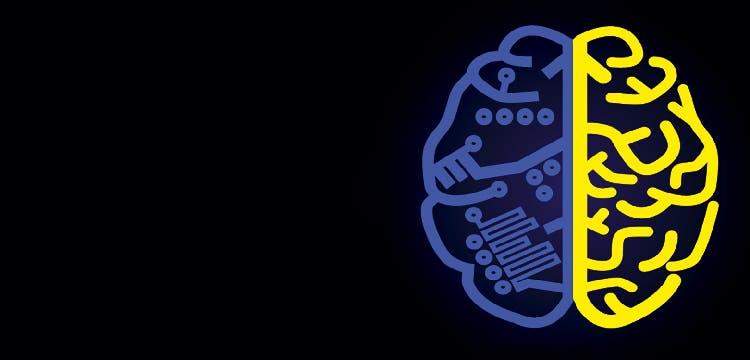 Lecciones de la neurociencia para diseñar incentivos