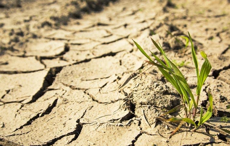 El Niño provoca cuantiosas pérdidas en América Central