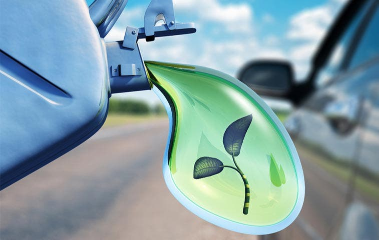 País cuenta con la primera gasolinera biodiésel
