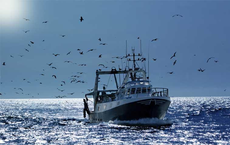 Ambientalistas denuncian pacto del Gobierno con pescadores