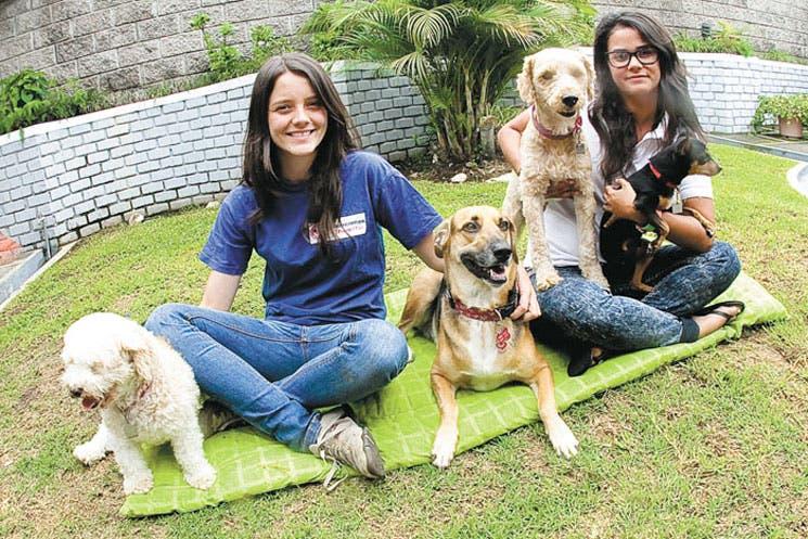 Costa Rica es primero en atención de animales en desastres en América Latina