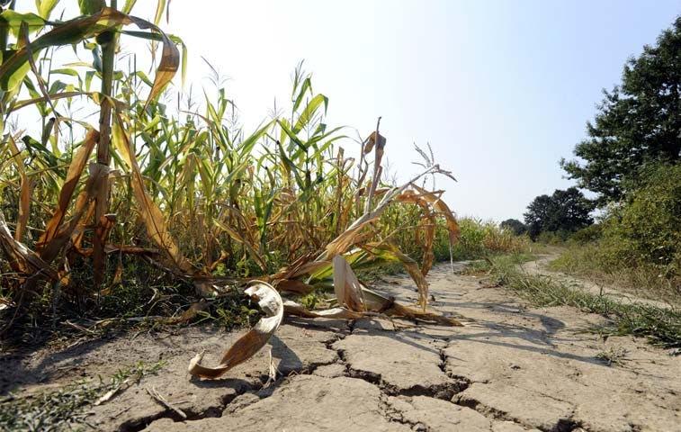 Holanda apoyará a comunidades afectadas por sequía