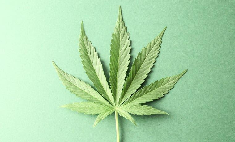 México aprueba uso recreativo de marihuana