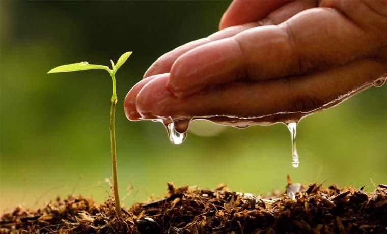 Informe sobre economía verde cerraría brecha ecológica del país