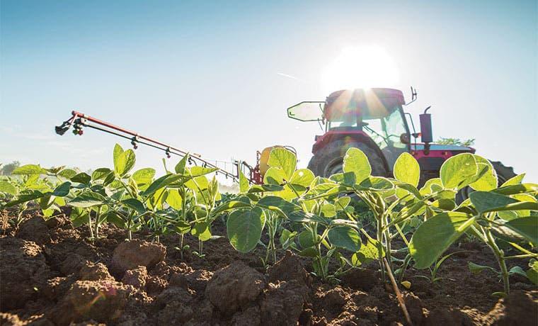 Nuevo presidente argentino evalúa suspender impuesto a la soja
