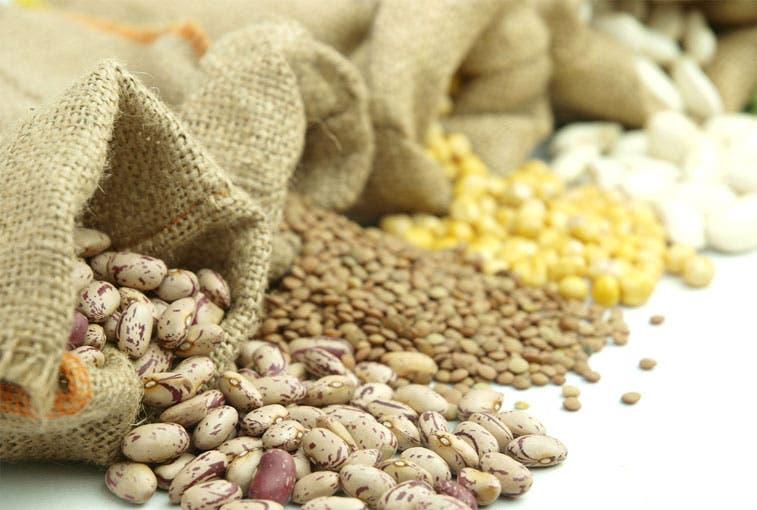 País forma parte de nueva red de abastecimiento de alimentos