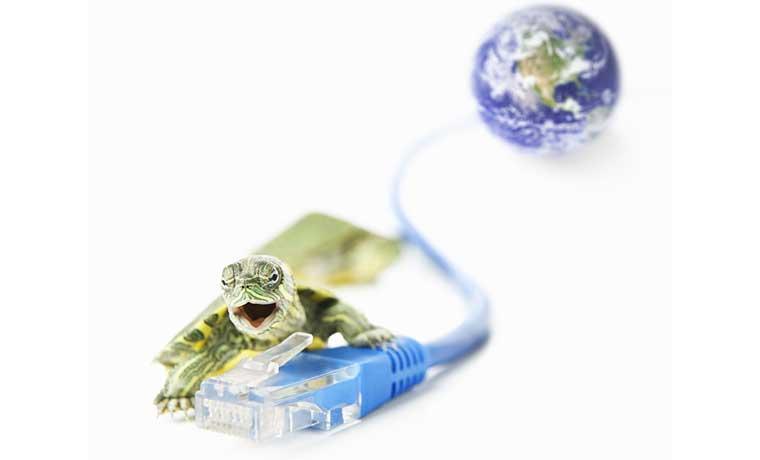 Internet tico sigue a paso de tortuga